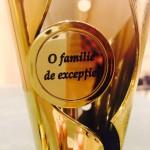 13 150x150 OFSD a premiat sapte familii de exceptie ale Brasovului cu priejul Zilei Internationale a Familiei